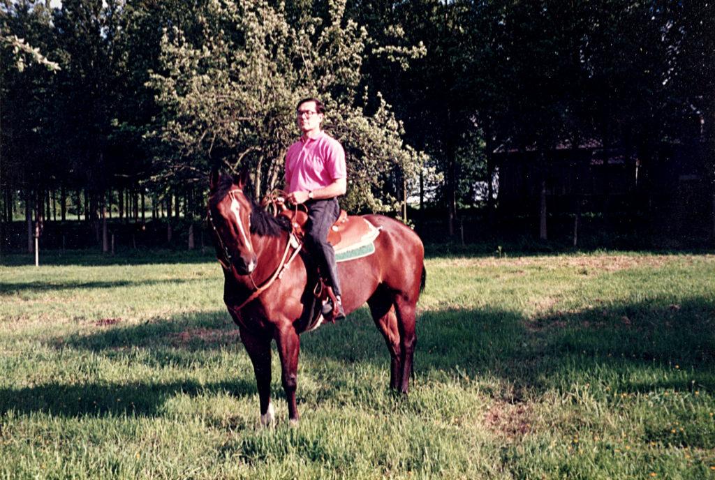 Cheval americain quarterhorse
